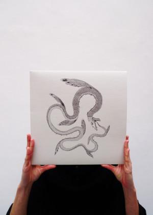Il Serpente nel Cielo